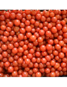 Tomate 'Red Cherry'