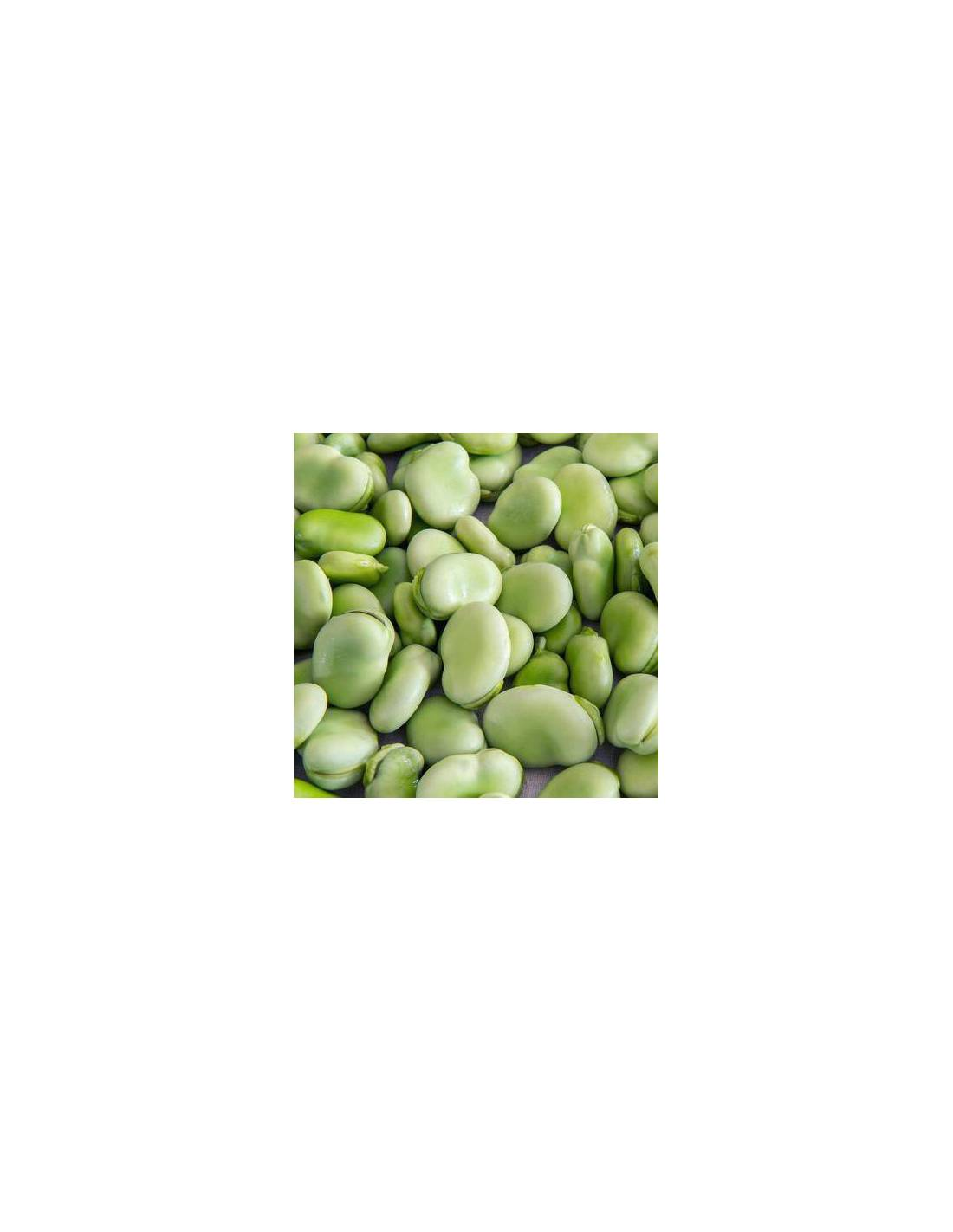 Fava 'Do Algarve'