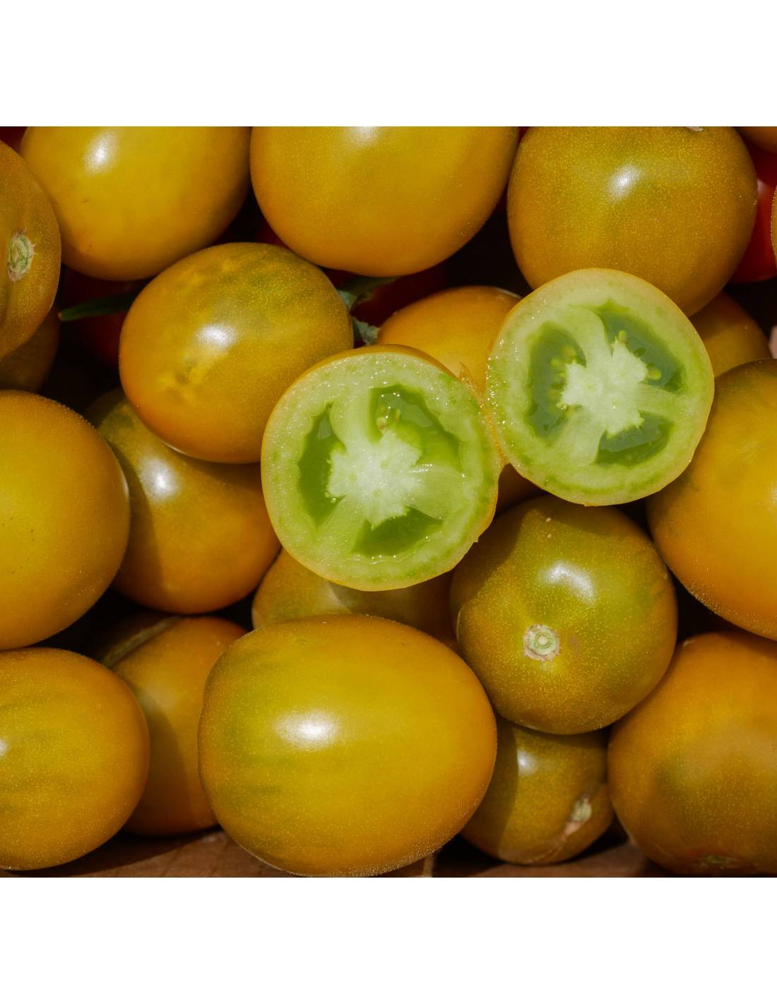 Tomate 'Green Grape'
